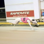 Race 3 5/8/15