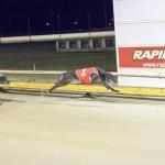 Race 8 5/8/15