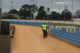 Hoop Arm at Cranbourne
