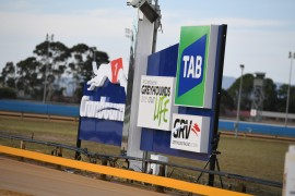 All in at Cranbourne Tricodes