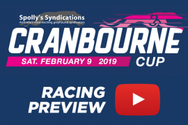 2019 Group 2 Cranbourne Cup Preview