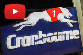 2020 Group 2 Cranbourne Cup Preview
