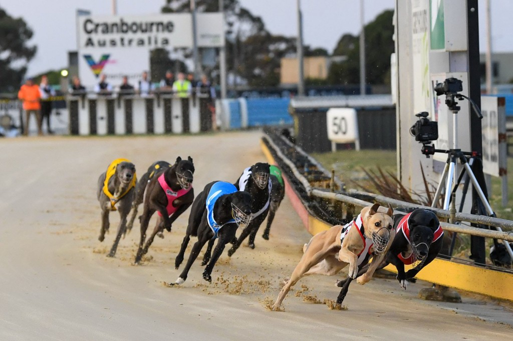 Unique coming to Cranbourne