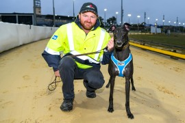 Bling shines brightest in Cranbourne heats