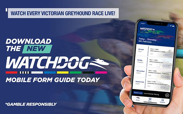 Watchdog_App_Greyhound_Racing_00_club