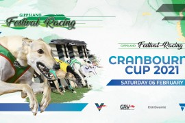 Backman's Greyhound Supplies Cranbourne Cup